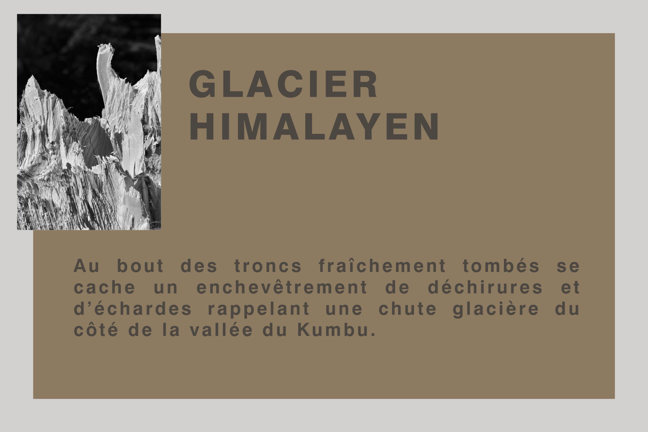 Glacier Himalayen