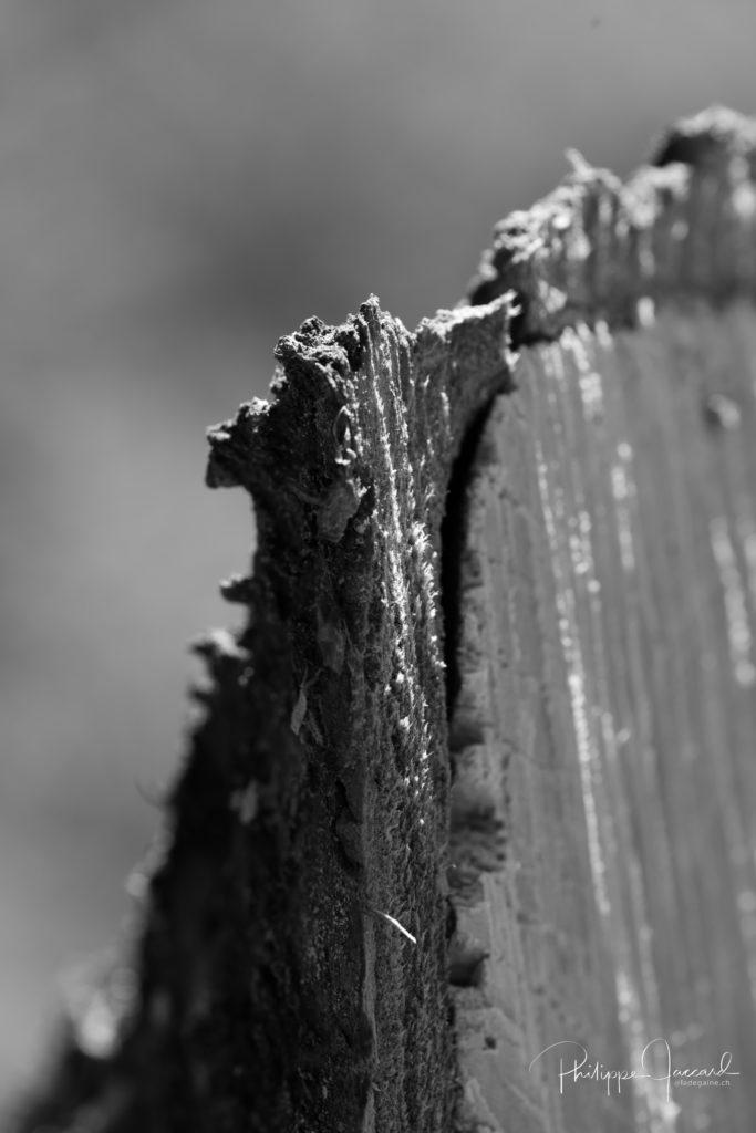 Cette coupe de bois fait penser au grand capucin dans le massif du Mont-Blanc @ près de chez moi – Grand Capucin par Philippe Jaccard