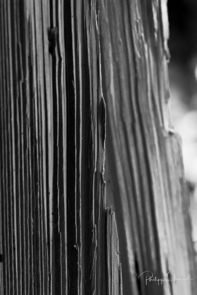 Cette coupe de bois fait penser aux falaises des grandes tours de Paine @ près de chez moi – Tour du Paine par Philippe Jaccard