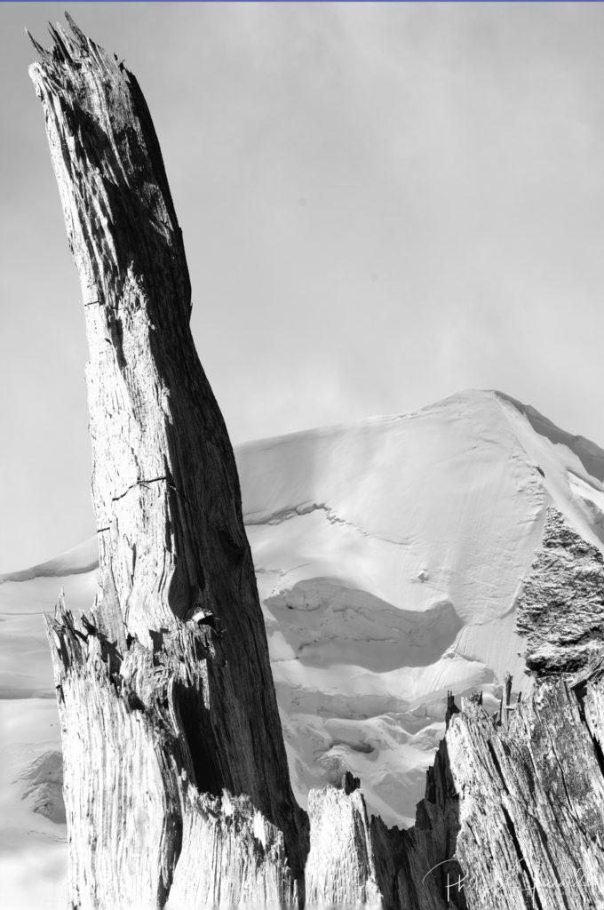 Montagnes de nos forêts @ près de chez moi – Fiamma d'Albigna par Philippe Jaccard