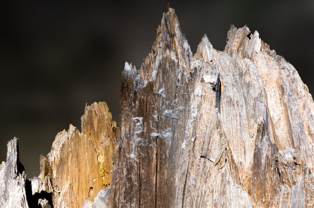 L'aiguille des Grands Charmoz surplombant la mer de glace dans le massif du Mont-Blanc @ près de chez moi – Grands Charmoz par PhL'aiguille des Grands Charmoz surplombant la mer de glace dans le massif du Mont-Blanc @ près de chez moi – Grands Charmoz par Philippe Jaccardilippe Jaccard