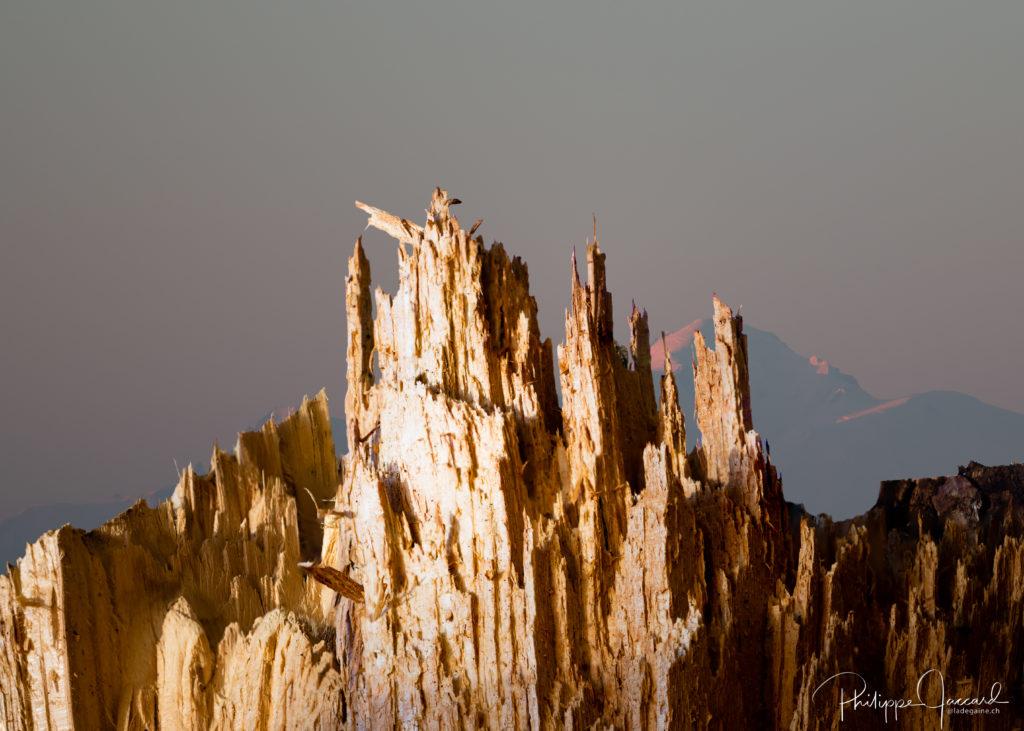 Vue sur le Mont Béan depuis les Aiguilels rouges ( par Philippe Jaccard)