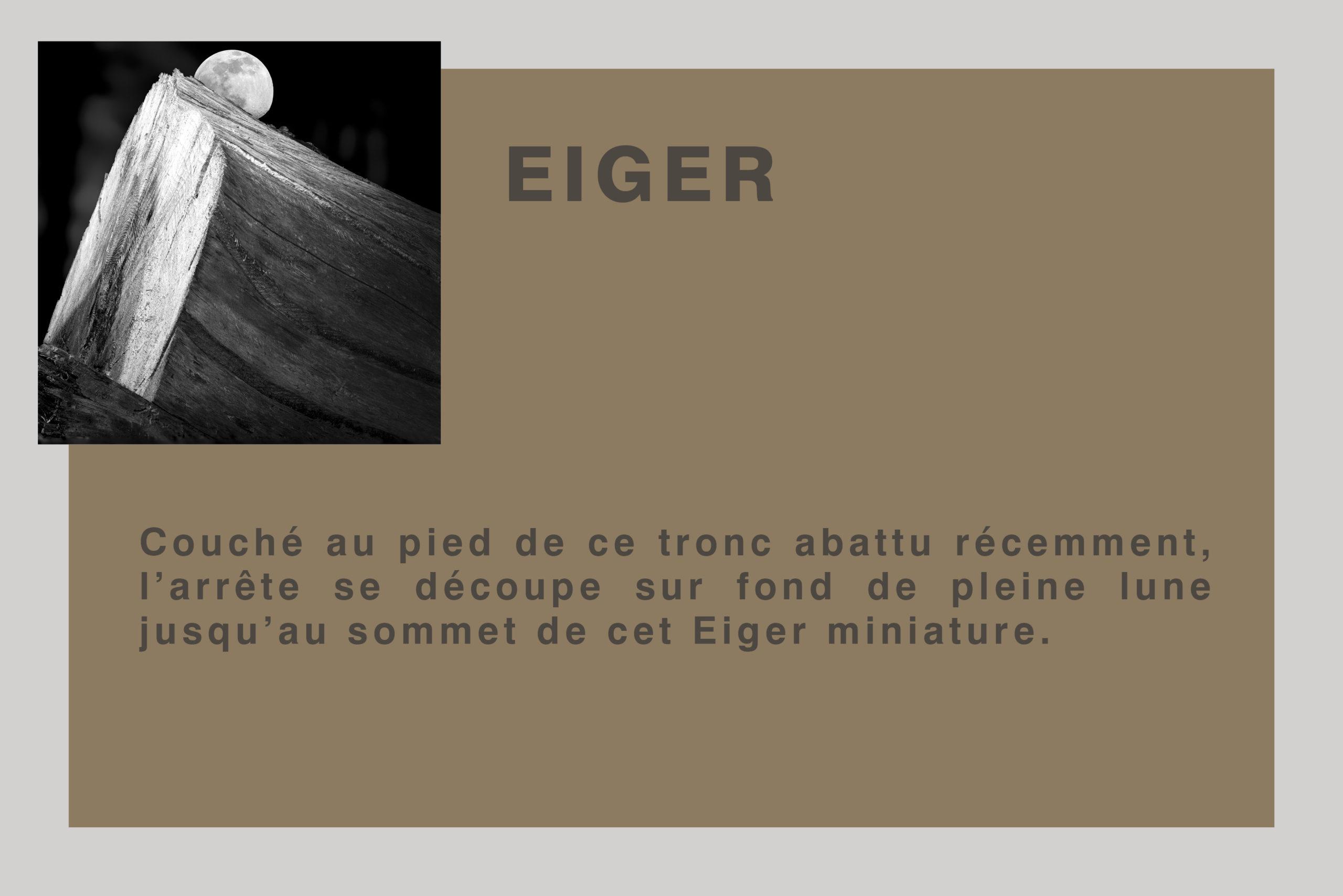 plaque Eiger