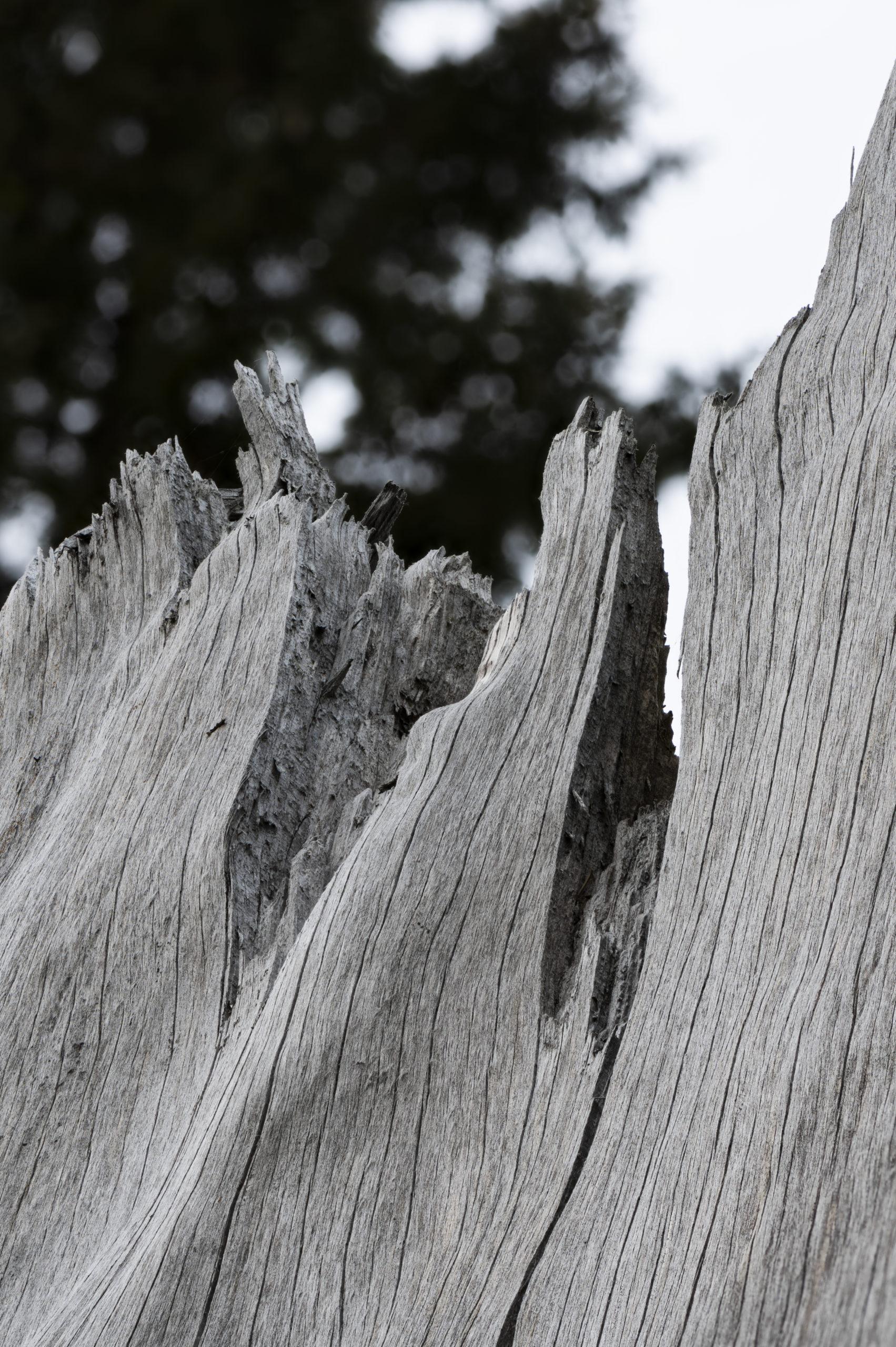 Patagonie making of